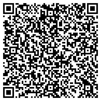 QR-код с контактной информацией организации ИП ДЕНИСОВ Е.В.