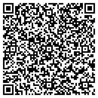 QR-код с контактной информацией организации ИП НИКОЛАЕВ В.Ф.