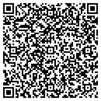 QR-код с контактной информацией организации ИП ПОГОДИН А.В.