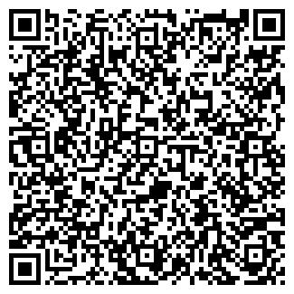 QR-код с контактной информацией организации РАИЛ, ЗАО