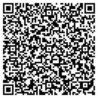 QR-код с контактной информацией организации ООО ПАЛИСАНДР