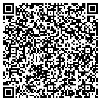 QR-код с контактной информацией организации NIJOLE