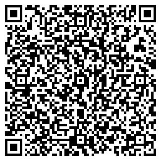 QR-код с контактной информацией организации МИР СТУДИЯ