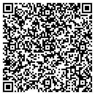 QR-код с контактной информацией организации ЛИЛИЯ КАФЕ