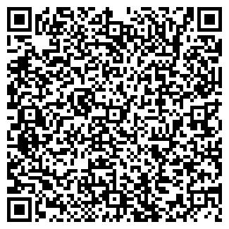 QR-код с контактной информацией организации АЛЬРАМИ, ООО