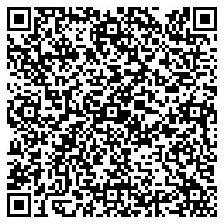 QR-код с контактной информацией организации РАДАЕВ В. В.