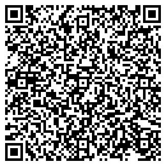 QR-код с контактной информацией организации КОЛОРИТ-М
