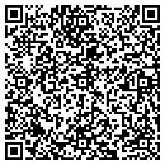QR-код с контактной информацией организации ООО ИЗОБИЛИЕ, МАГАЗИН