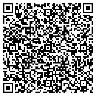 QR-код с контактной информацией организации ВИРИГИН ЧП