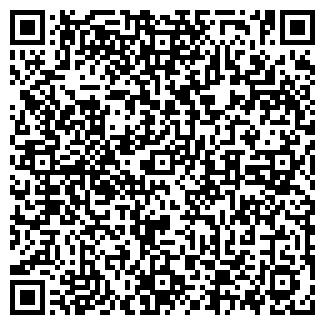 QR-код с контактной информацией организации ООО АРКО ИНТЕРНЕЙШНЛ
