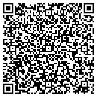 QR-код с контактной информацией организации ДАНМЕТ ООО