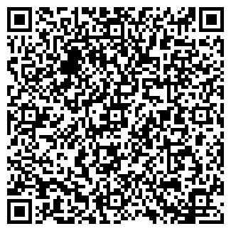 QR-код с контактной информацией организации ДОМСТРОЙ