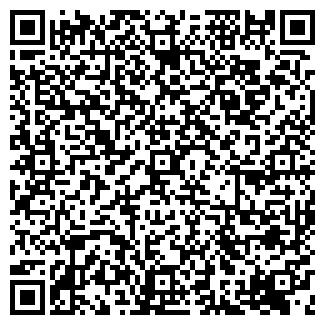 QR-код с контактной информацией организации РИМША ИП