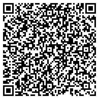 QR-код с контактной информацией организации БОГАЧЕВ А.Д. ИП