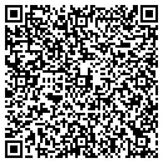 QR-код с контактной информацией организации ДОМСТРОЙ ФИРМА