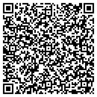 QR-код с контактной информацией организации ИП ТЕЛУШКИН А.В.