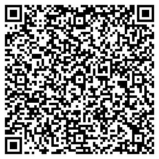 QR-код с контактной информацией организации ООО ВИКИНГ