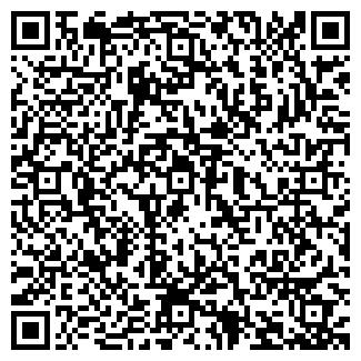 QR-код с контактной информацией организации ИП ЛЕМЕХОВ