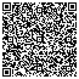 QR-код с контактной информацией организации ИП ШИШКИН А.В.
