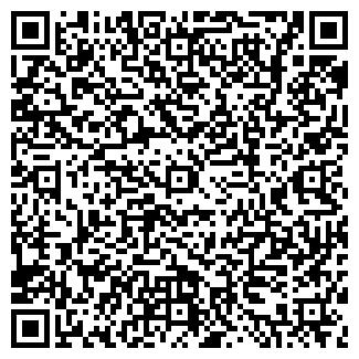 QR-код с контактной информацией организации ИП ТУРКИНА Н.А.