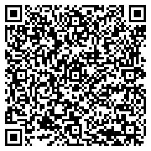 QR-код с контактной информацией организации ШАЛЫГИН А.Ю., ЧП