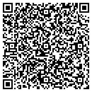QR-код с контактной информацией организации ДЕТСКАЯ ХУДОЖЕСТВЕННАЯ ШКОЛА, МУ