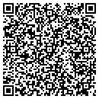 QR-код с контактной информацией организации АЛИ, ООО