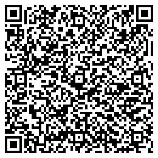 QR-код с контактной информацией организации Субъект предпринимательской деятельности MixaART