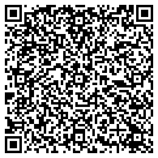 QR-код с контактной информацией организации InCar