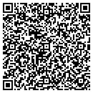 QR-код с контактной информацией организации Другая ИП Веелко