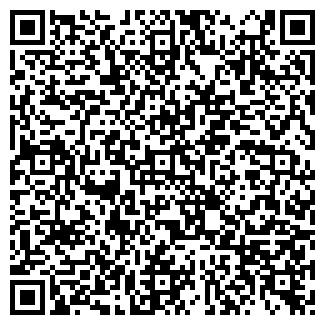 QR-код с контактной информацией организации ИП S-master