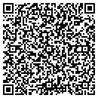 QR-код с контактной информацией организации vistaauto