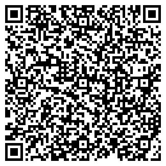 QR-код с контактной информацией организации ИП Никитин С. Н.