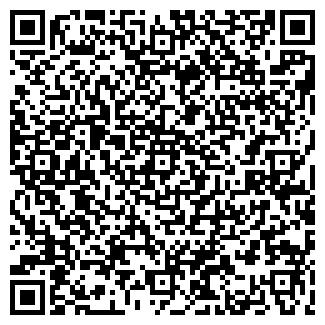 QR-код с контактной информацией организации ИП РемСтирМаш