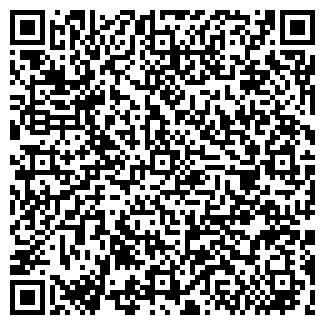 QR-код с контактной информацией организации ИП SM COLD