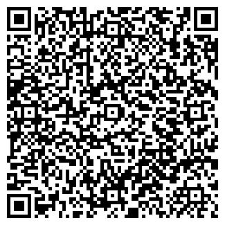 QR-код с контактной информацией организации ИП Страшков