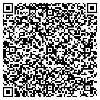 QR-код с контактной информацией организации СТО «Хамелеон», Субъект предпринимательской деятельности