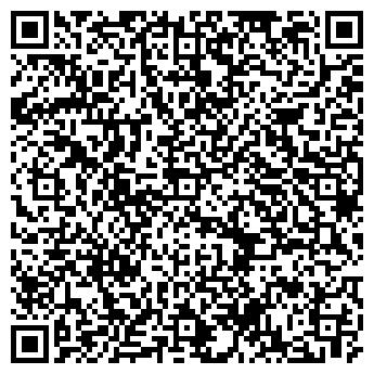 """QR-код с контактной информацией организации ООО """"Мир РВД"""""""