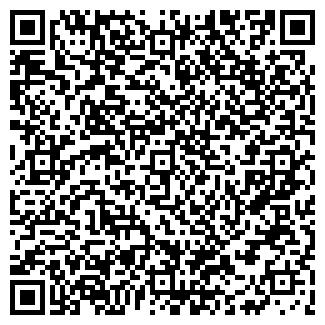 QR-код с контактной информацией организации ИП Апон Н. И.