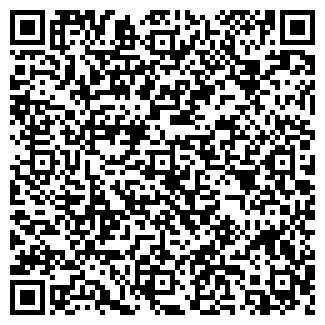 QR-код с контактной информацией организации Субъект предпринимательской деятельности ИП Пушнов