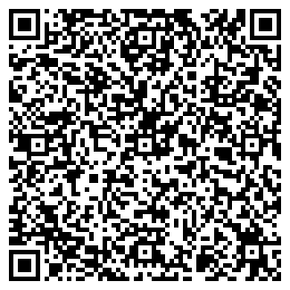 QR-код с контактной информацией организации Vlanto
