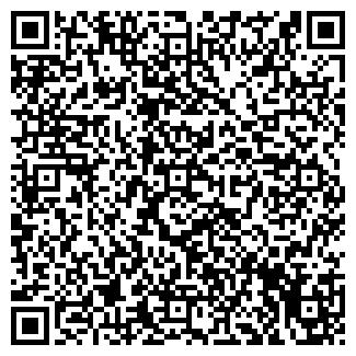 QR-код с контактной информацией организации Старсервис