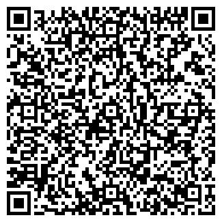 QR-код с контактной информацией организации ТИМЭЛ, ООО