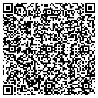 QR-код с контактной информацией организации Субъект предпринимательской деятельности Ice Queen