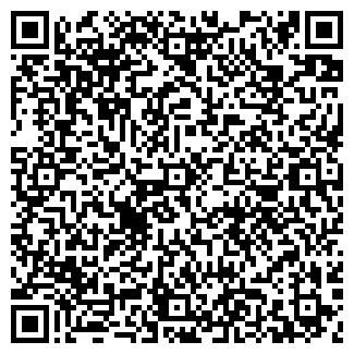 QR-код с контактной информацией организации РИОЛ АВТО
