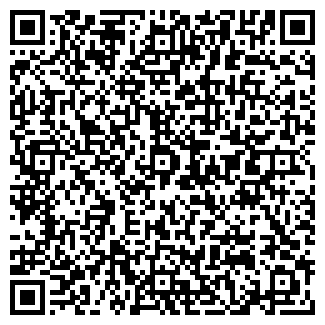 QR-код с контактной информацией организации Платинум