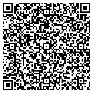 QR-код с контактной информацией организации Dayson