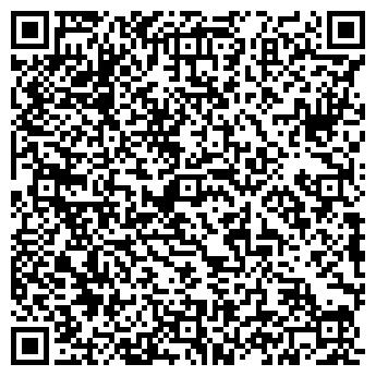 QR-код с контактной информацией организации Nemo (Немо), ИП