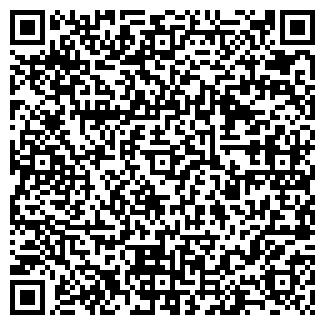 QR-код с контактной информацией организации ИП Николаенко