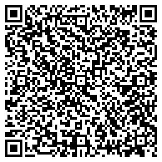 QR-код с контактной информацией организации Другая ИП Глоба